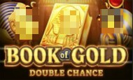 Book of Gold: Double Chance Slot