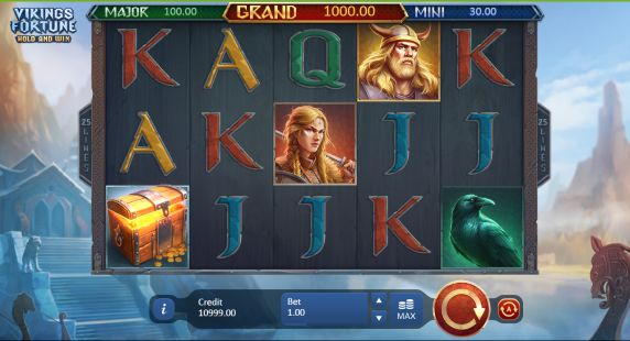 Vikings Fortune: Hold and Win Casino Slots
