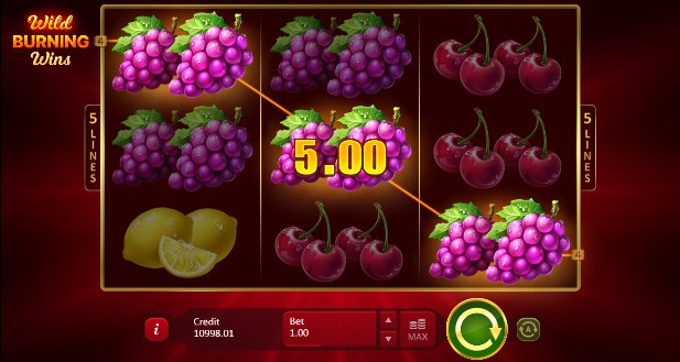 Wild Burning Wins: 5 Lines Casino Slots